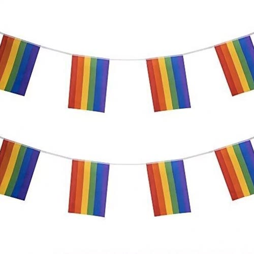 Gay Pride Rainbow Flag Bunting Large (10m x 30 Large Flags)