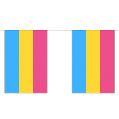 Pansexual Pride Flag Bunting Small (9m x 30 flags)