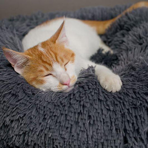 SOFT PET SLEEPING CUSHION