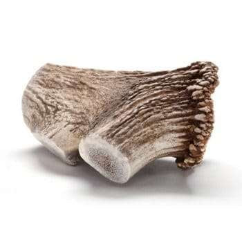 Antler Bones long lasting dog chews