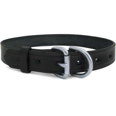 Classic Flat Leather Collar with Engraved Plate