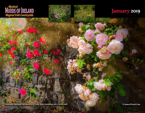 2019 Magical Irish Countryside Wall Calendar Calendar Moods of Ireland
