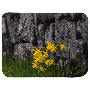 Sherpa Blanket (Infant Size) - Irish Spring Daffodils Baby Blanket Moods of Ireland 30x40 Inch