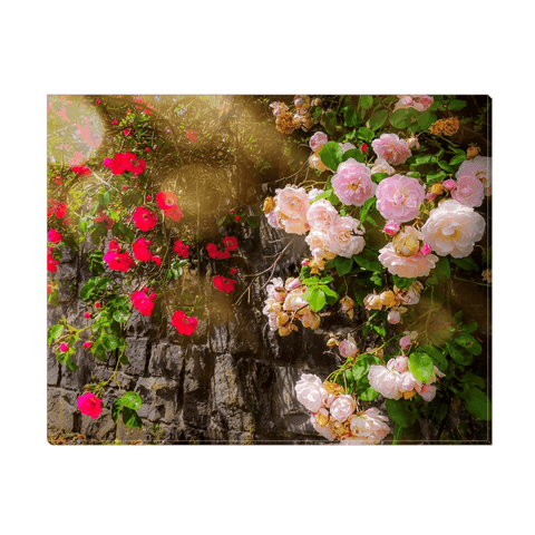 Image of Canvas Wrap - Irish Roses Canvas Wrap Moods of Ireland 11x14 inch