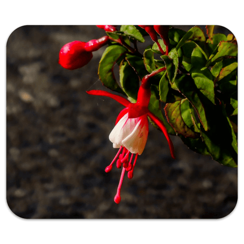 Mousepad - Fuchsias in the Irish Countryside Mousepads Moods of Ireland 7.79x9.25 inch