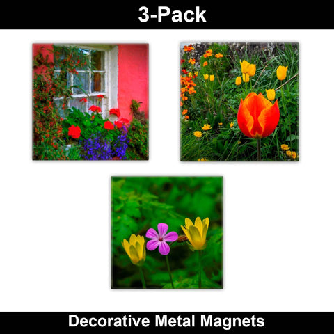 Metal Magnets - Irish Flowers Collection Metal Magnets Moods of Ireland 2x2 inch, 3 Pack