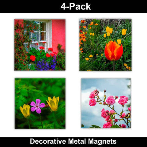 Image of Metal Magnets - Irish Flowers Collection Metal Magnets Moods of Ireland 2x2 inch, 4 Pack