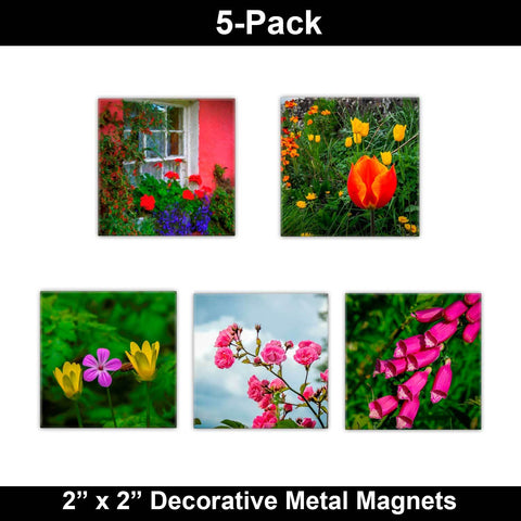 Metal Magnets - Irish Flowers Collection Metal Magnets Moods of Ireland 2x2 inch, 5 Pack