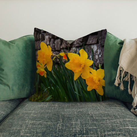 Pillow Cover - Irish Spring Daffodils and Rock Wall in County Clare Pillow Cover Moods of Ireland