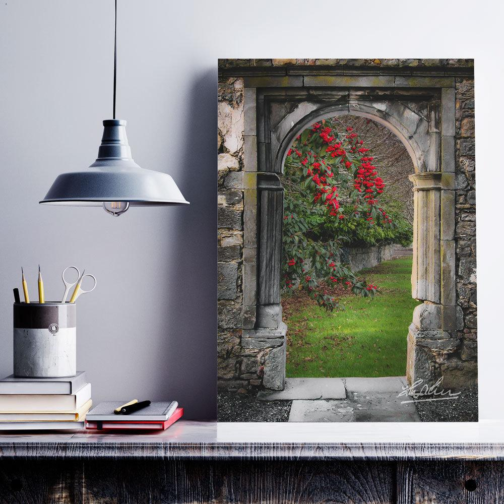 Blooming Bush in County Clare, Ireland, Mindfulness Wall Art Poster Moods of Ireland