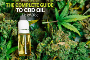 The Complete Guide To CBD Oil