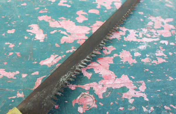 A Vintage Pruning Saw with Beach Wood Handel