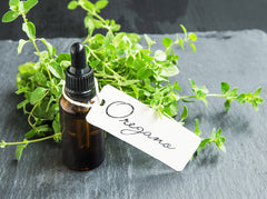 11 Benefits of Oregano Oil: Your Must-Have Antibacterial Herb
