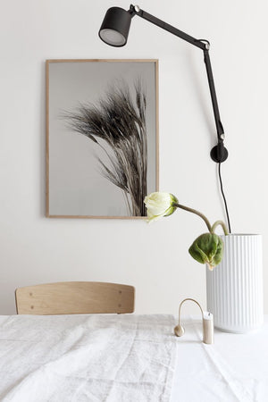 Poster Wandbild Kamut - anikoo Interior and Lifestyle Conceptstore
