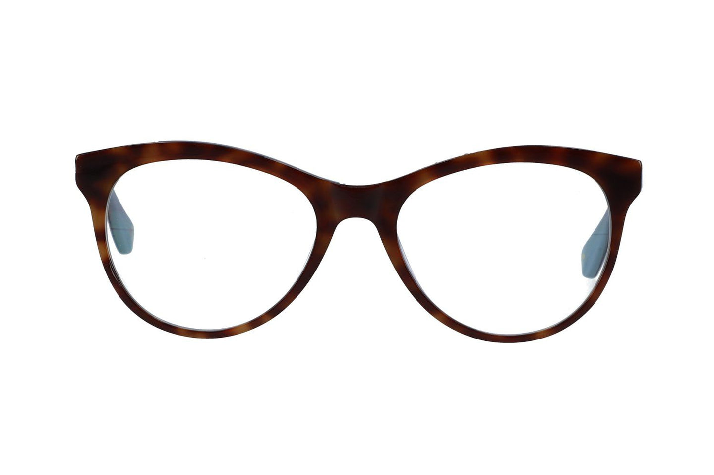 brown_tortoise_frame_with_blue_hinges
