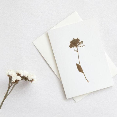 OLA Studio - Allium Card