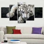 Five Piece White Tiger Painting