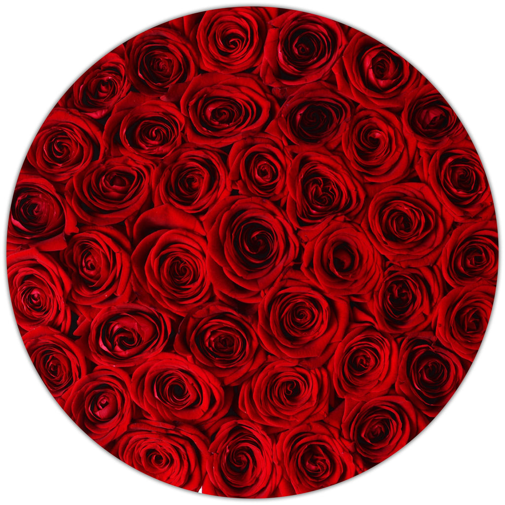 Medium - Red Roses - Black Box - The Million Roses Slovakia