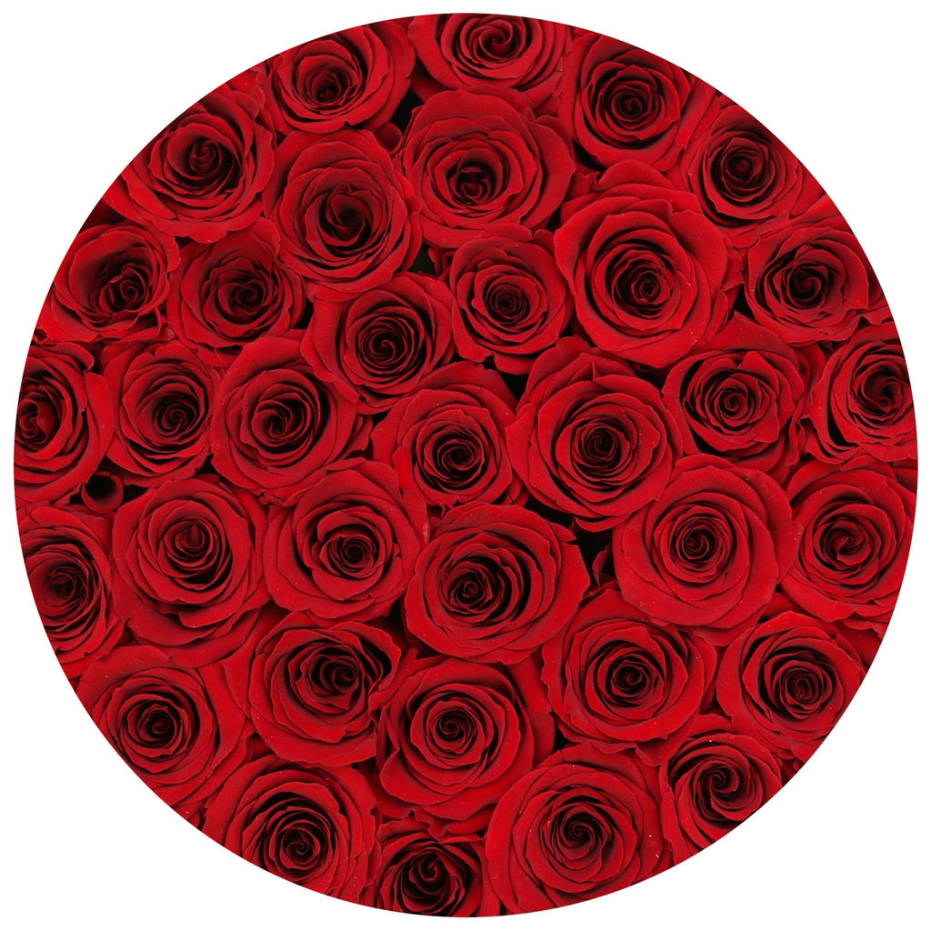 Medium - Red Eternity Roses - Black Box - The Million Roses Slovakia