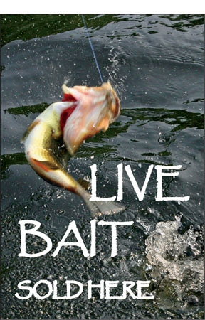 "Live Bait Sold Here- 24"" x 36"" Aluminum Pole sign"