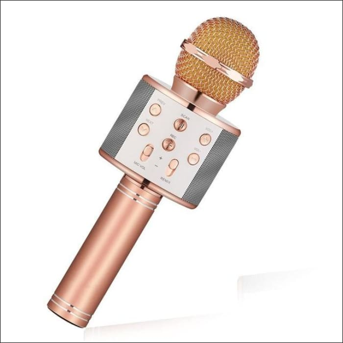 Bluetooth Handheld Wireless Karaoke Microphone Player, Speaker, Record  Music for iPhone and PC