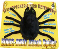 Attack Spider Woodpecker Deterrent