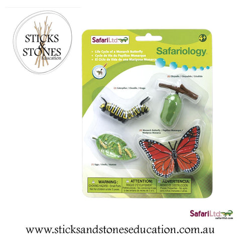 Life Cycle of a Butterfly - Sticks & Stones Education