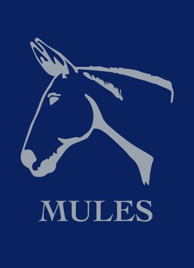 Playing Cards - Mule