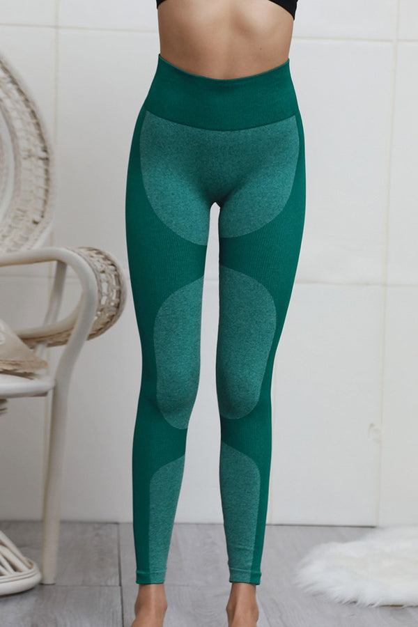 AU 6 SIERRA SEAMLESS HIGH WAIST TIGHTS FOREST GREEN - CHICKABERRY BOUTIQUE Australia Womens