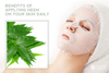Benefits of Applying Neem on your Skin Daily