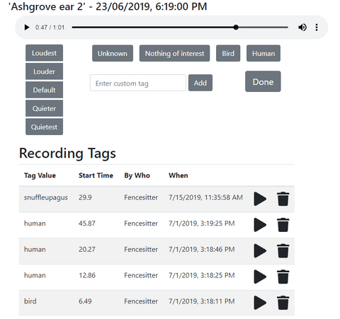 Audio tagging interface with tags