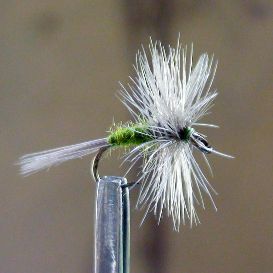 Beginner fly anglers should use the EZEYEFLY brand of large eye flies, like this Blue Wing Olive.