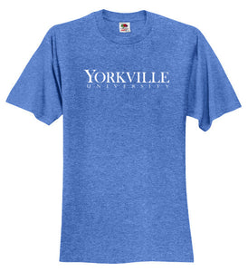 YU BLUE FRUIT OF THE LOOM® HD COTTON™ 100% COTTON T-SHIRT