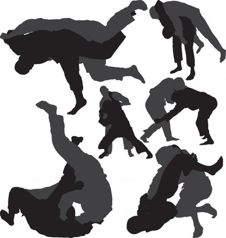shadows of jiu-jitsu fighters performing different moves