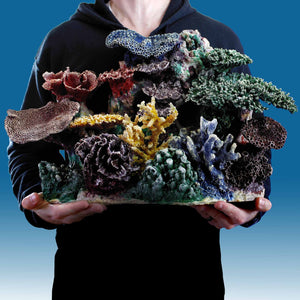 R063 Medium Reef (Clearance 40% Off)