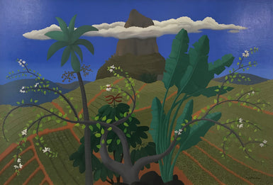 Pinapple Farm with Clouds 2009
