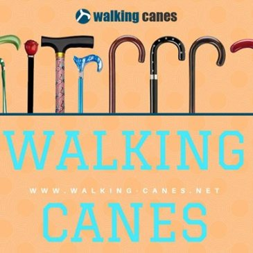 fashionable canes for men and women