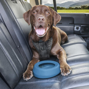 KURGO Splash Free Water Bowl