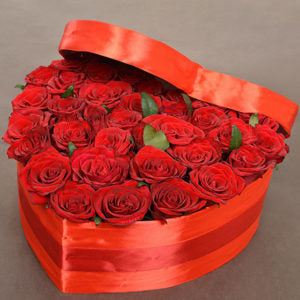 2 dozen Red Holland Roses in a Box