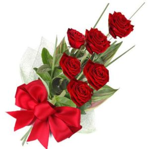 6 pcs Red Holland Roses in a Bouquet with 16inches Teddy Bear