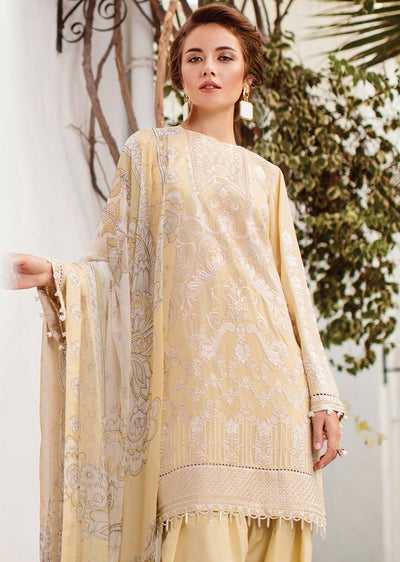 bbbb925df2 07 ICEBERG - Baroque Swiss Voile Collection 2019 - Pakistani Lawn Salwar  Kameez Embroidered Summer -