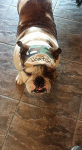 Camo Dog Hat - can be personalized