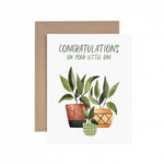 Congratulations Little One Greeting Card