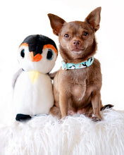 Load image into Gallery viewer, Ice Skating Penguins Dog Collar