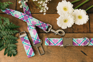 Purple Plaid Dog Collar