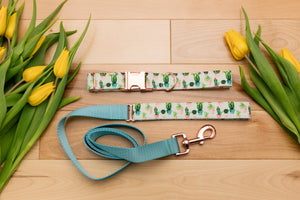 Succulent and Cactus Customizable Dog Collar