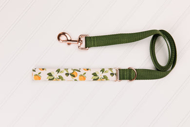 Clementines Customizable Matching Dog Leash