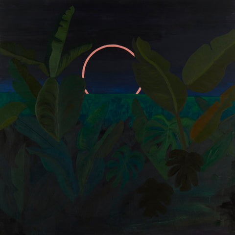 Jungle Eclipse