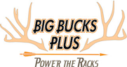 Big Bucks Plus