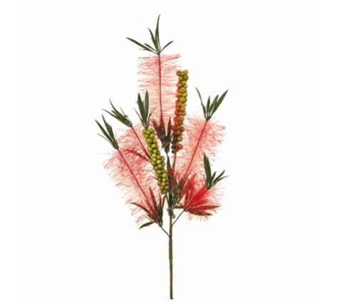 Bottle Brush Spray - Red
